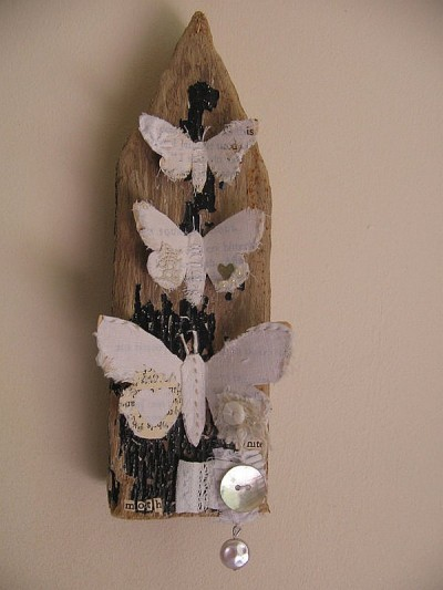 Wall assemblage moths