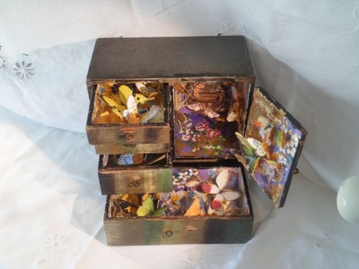 wooden boxed art butterfly assemblage Hidden Places by MesssieJessie